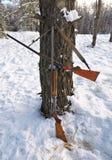 狩猎枪在冬天森林里 库存照片