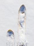 狩猎滑雪 库存照片