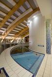 独有的池游泳 库存图片