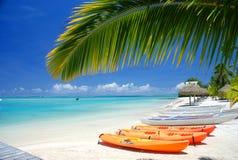 独木舟和独木舟在一种热带手段 Moorea, 免版税图库摄影