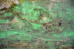 独特的概略的木绿色纹理 库存照片