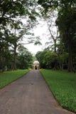 独特的皇家植物园在Peradeniya被考虑作为一个最好在亚洲 库存图片
