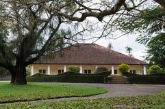 独特的皇家植物园在Peradeniya被考虑作为一个最好在亚洲 免版税库存图片