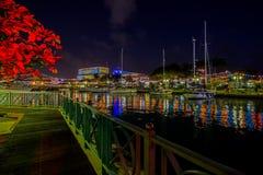 独立和圣诞灯在布里季敦,巴巴多斯 免版税库存照片