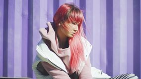 独立年轻女人画象有摆在紫色容器背景的桃红色头发的 t 影视素材