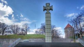 独立战争胜利专栏在自由正方形在塔林,爱沙尼亚 库存图片
