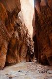 狭窄在锡安国家公园,犹他,美国远足 免版税库存图片
