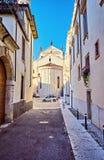 狭窄的古老街道开花边路石头步五颜六色的门面意大利中心维罗纳 库存照片