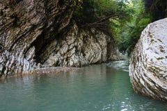 狭窄的在greenforest的山蓝色河峡谷在高加索山脉 免版税库存图片