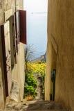 狭窄的楼梯俯视的湖和葡萄园 库存照片