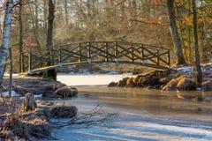 狭窄的点桥梁 免版税库存照片