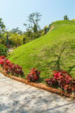 狭窄的看法绿色庭院和路,金奈,印度, 2017年4月01日 库存图片