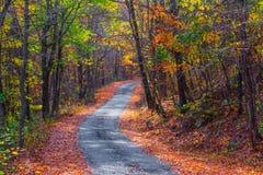 狭窄的秋天路 图库摄影