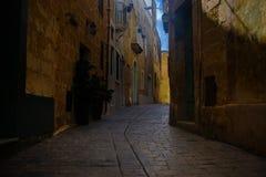 狭窄的胡同在马耳他 免版税库存图片