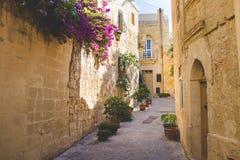 狭窄的街道在有花装饰的马耳他 库存照片