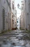 狭窄的街道在白色市奥斯图尼,普利亚,意大利 免版税图库摄影