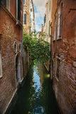 狭窄的水运河在威尼斯 库存图片