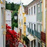 狭窄看法在Constancia,葡萄牙铺了街道 免版税库存图片