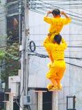狮子中国人显示测试 库存照片