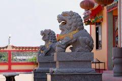 狮子中国 库存照片