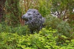 狮子保护龙庭院 图库摄影