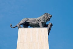 狮子古铜色图与徽章,布拉索夫的 库存照片