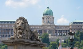 狮子和城堡 图库摄影