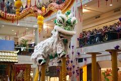 狮子和龙舞蹈Barongsai在购物中心雅加达印度尼西亚 库存照片
