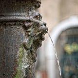 狮子喷泉在威尼斯 免版税库存图片