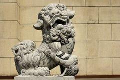 狮子踩雕象在地球上的 免版税库存图片