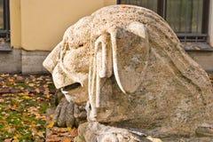 狮子在大墓地 免版税图库摄影