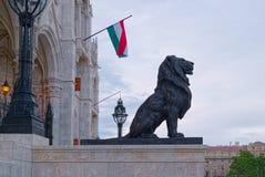 黑狮子在布达佩斯 库存照片