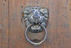 狮子在老木门的通道门环 免版税库存图片