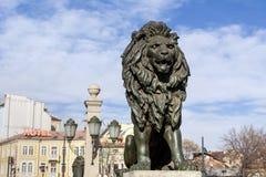 狮子在索非亚跨接 免版税库存图片