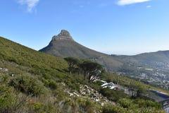 狮子头的看法从桌山的在开普敦,南非 免版税库存图片