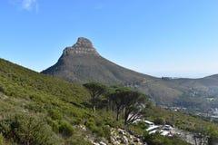 狮子头的看法从桌山的在开普敦,南非 图库摄影