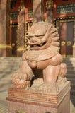 狮子守卫寺庙 库存照片