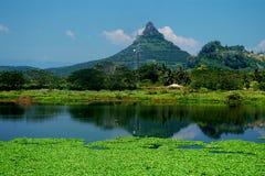 狮子小山- Sungai Siput U 免版税库存图片