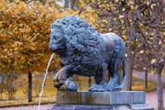 狮子小瀑布的元素在Peterhof 库存照片