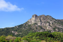 狮子岩石 免版税图库摄影