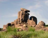 狮子岩石s 库存图片