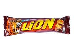 狮子巧克力块 免版税图库摄影