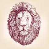 狮子手拉的传染媒介llustration 免版税库存图片