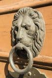 狮子敲门人 免版税库存图片