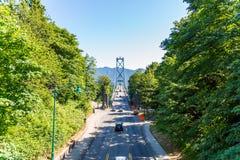 狮子树构筑的门桥梁在一个晴天 库存图片