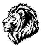 狮子顶头图表 免版税库存照片