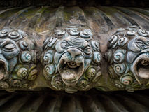 狮子的古铜色头 库存照片