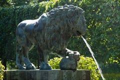 以狮子的形式喷泉 库存图片