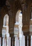 狮子的法院的曲拱和专栏在阿尔罕布拉宫 库存图片