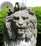 狮子的顶头雕象的非常特写镜头图片 图库摄影